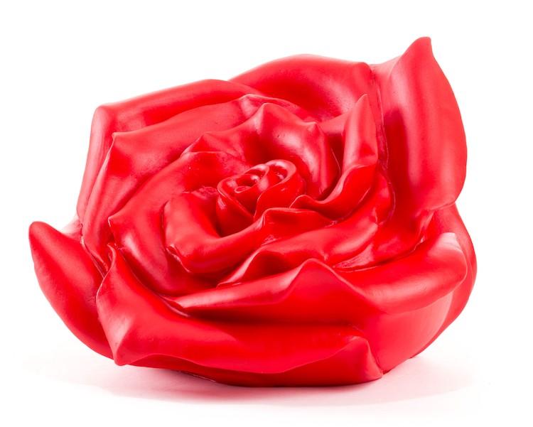 Rose (in verschiedenen Farbvarianten)